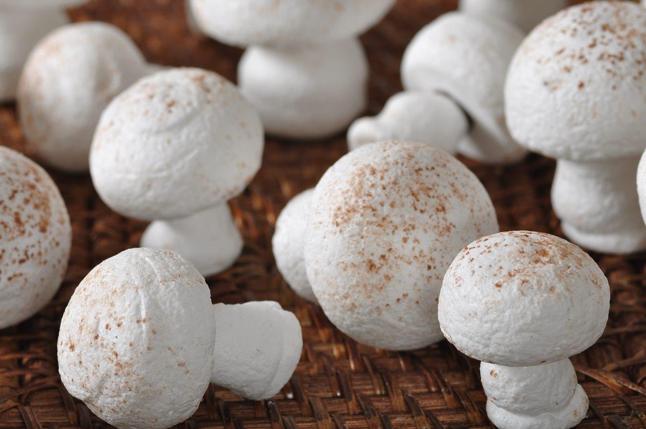 Meringue Mushrooms Video Recipe