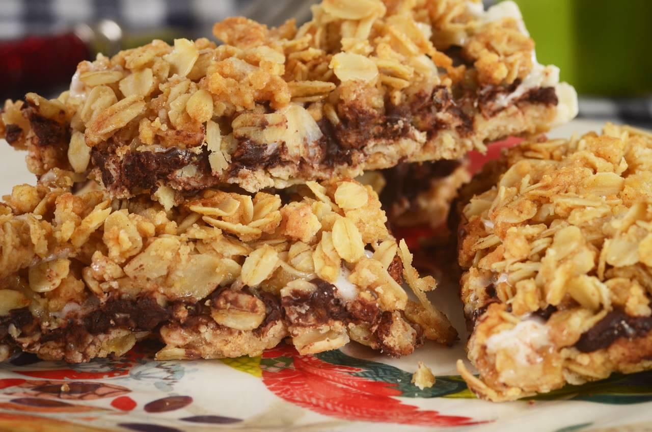 chocolate cranberry granola bar
