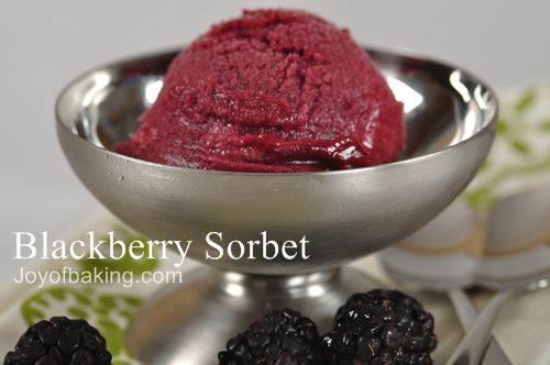 Blackberry Sorbet Recipe - Joyofbaking.com *Tested Recipe*