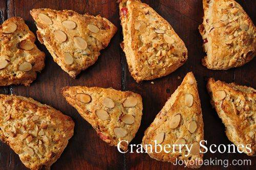 Cranberry Scones Recipe