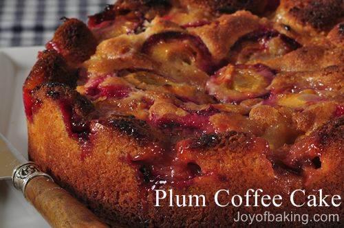 Best Italian Plum Cake Recipe